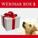 webinar-box-2