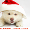 wundervolle weihnachten!